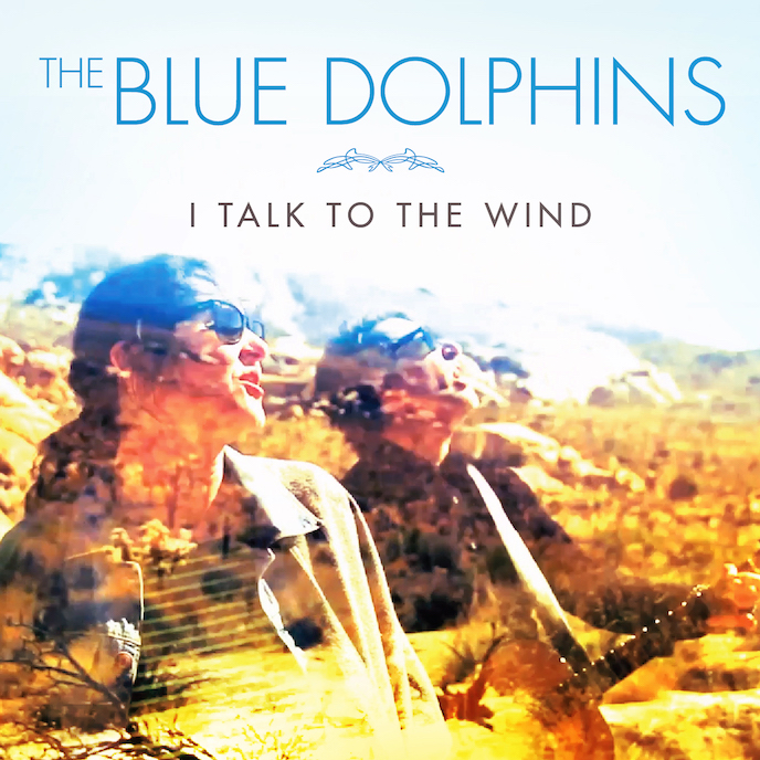 BlueDolphins_Wind copy Small.jpg